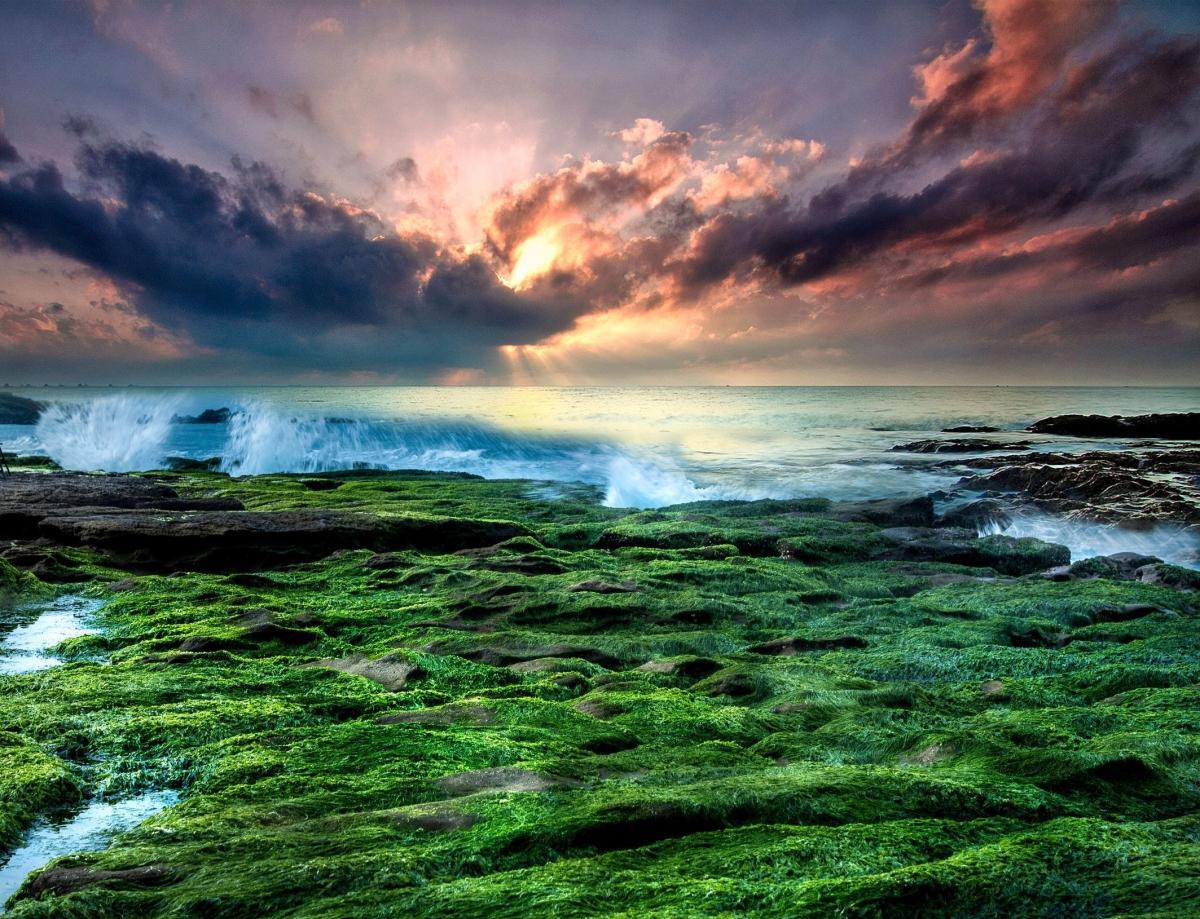 free sunset arnie-chou-8fJcEkYjfis-unsplash